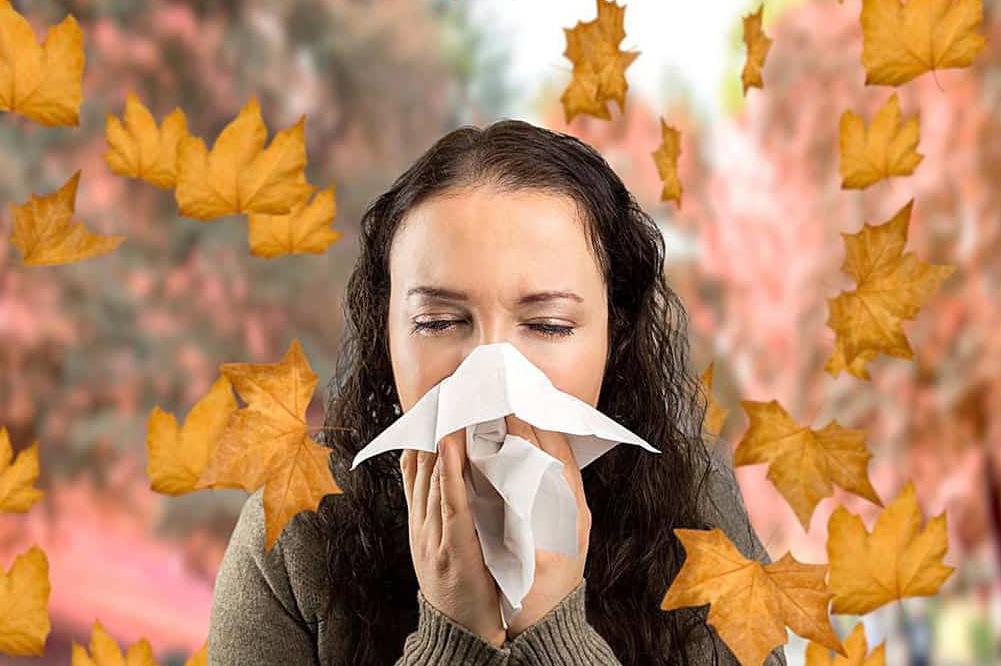 Обострение аллергии осенью