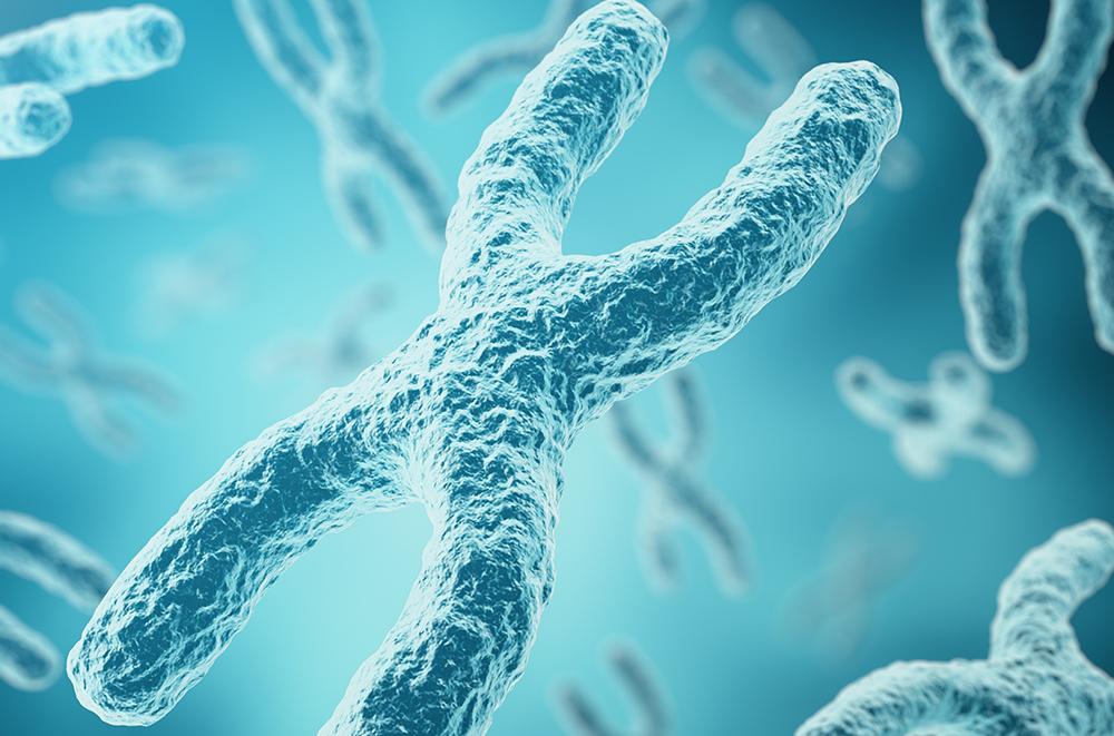 podhody-hromosomnogo-analiza