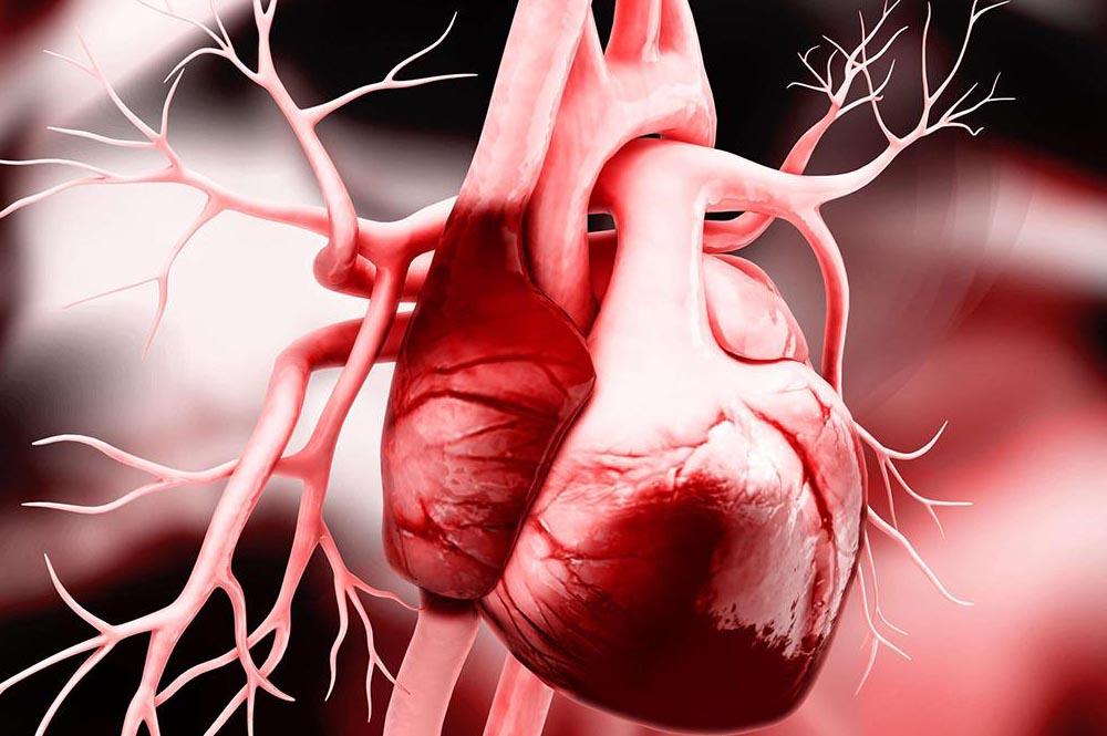 шумы сердца