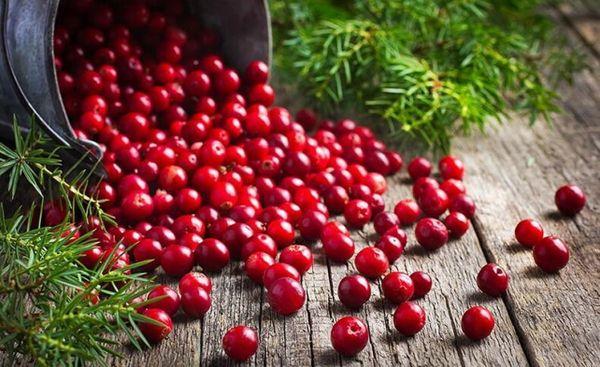 ягоды для лечения подагры